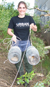 Bronwyn Williams with crayfish in traps nr Wainwright sml
